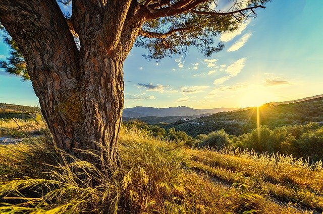 sunset-4238445_640